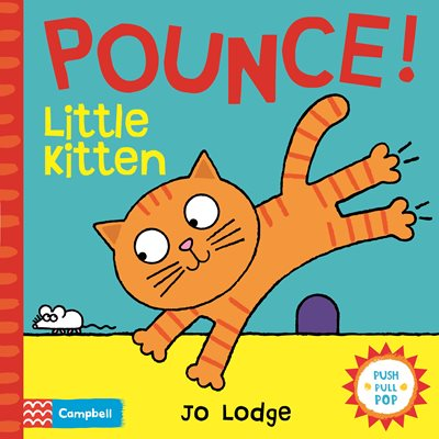 Book cover for Pounce! Little Kitten